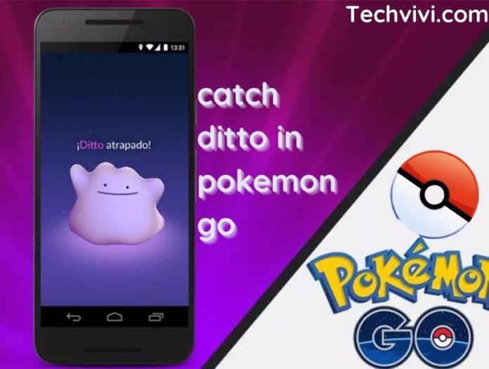 catch ditto in pokemon go - Techvivi