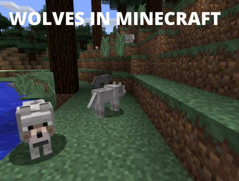 Things you probably didn't know about Wolves in Minecraft
